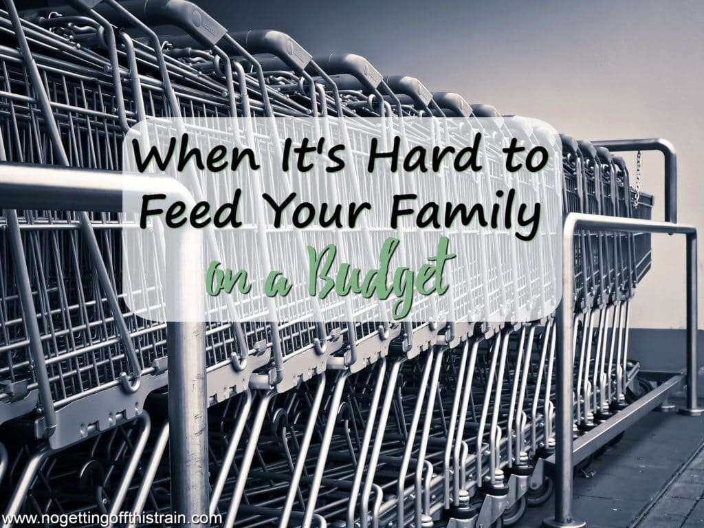 When It's Hard to Feed Your Family on a Budget