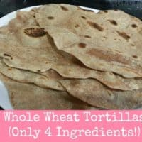 Whole Wheat Tortilla Shells- Only 54 Cents Per Batch!