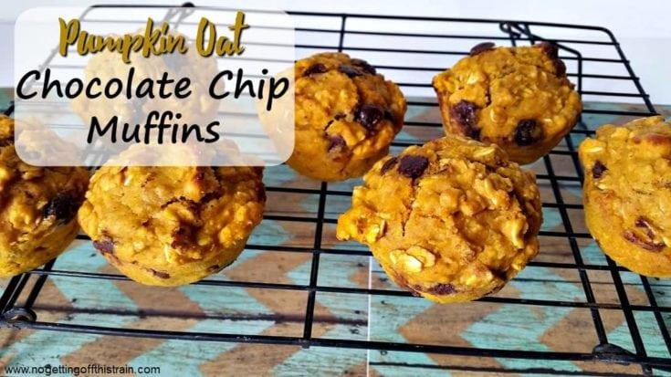 Pumpkin Oat Chocolate Chip Muffins