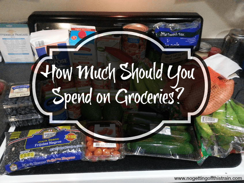 "How much should you spend on groceries? There's no right answer, but here are 3 factors that could determine how much you ""should"" spend. www.nogettingoffthistrain.com"