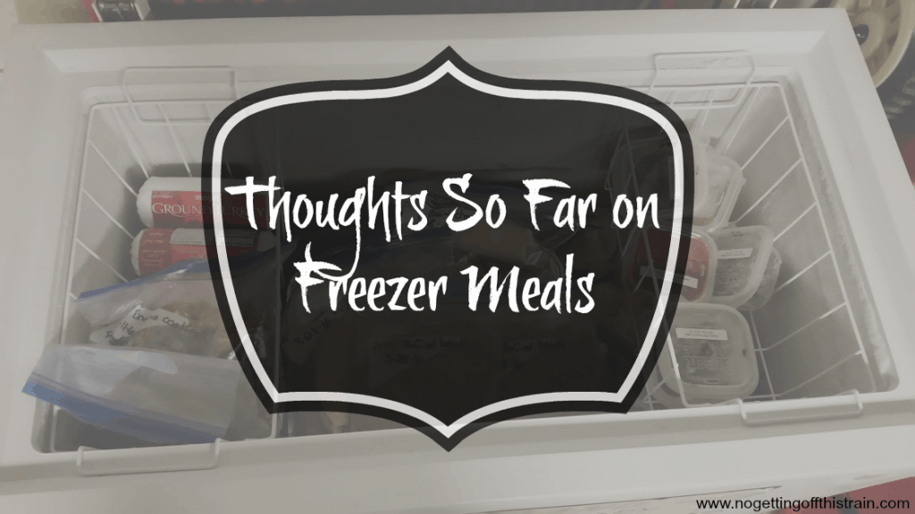 Thoughts so far on freezer meals- www.nogettingoffthistrain.com