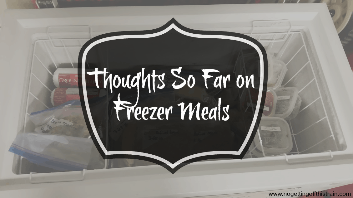 Thoughts So Far on Freezer Meals