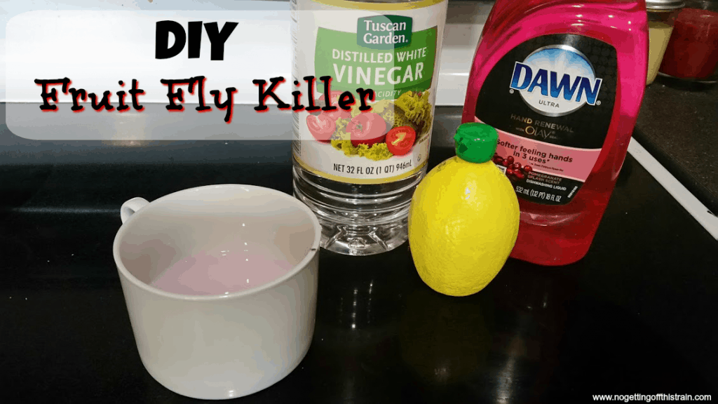 Fruit Fly Killer - #GolfClub