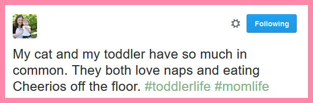 Toddler Tweets Tuesday #7- www.nogettingoffthistrain.com