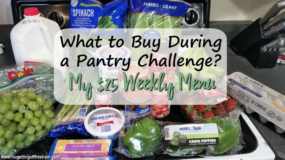 What should you buy during a pantry challenge? Here's a menu of frugal recipes and a $25 weekly shopping list! Week of: 3-19-18