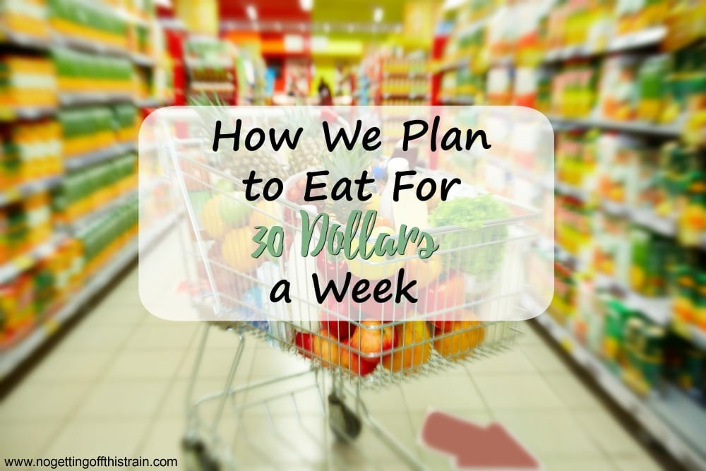 Is it possible to eat on a very low budget? Here's how we plan to temporarily eat for $30 a week and still eat relatively healthy!