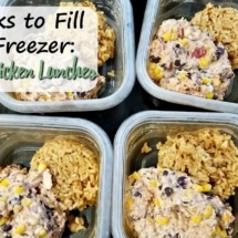 Santa Fe Chicken Frozen Lunches (4 Weeks to Fill Your Freezer Day 9)
