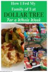"""Image of groceries with the title """"How I Fed My Family of 3 at Dollar Tree for a Whole Week"""""""