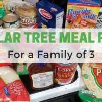 Dollar Tree Meal Plan for a Family of 3