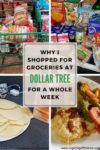 "Image collage of groceries with the title ""Why I Shopped for Groceries at Dollar Tree for a Whole Week"""