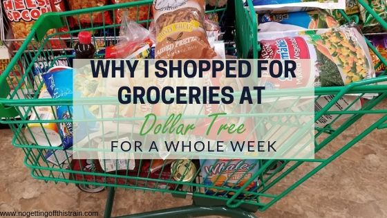 Does the thought of eating dollar store food surprise you? Here's why I shopped for mostly healthy groceries at Dollar Tree for a whole week.
