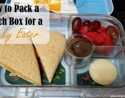 How to Pack a Lunch box for a Picky Eater